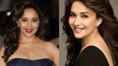 Photo of 10 Top Notch Movies From The Successful Career Of Madhuri Dixit.