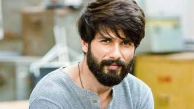 Photo of Shahid Kapoor to Romance This Beautiful Lady in His Next Film