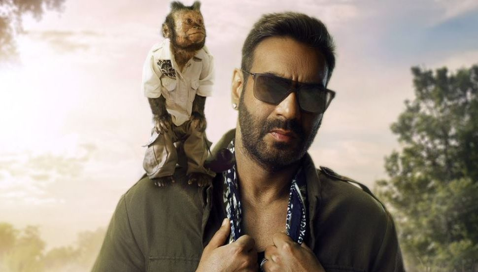 Photo of The Hangover Monkey to Make Her Bollywood Debut With Ajay Devgn's 'Total Dhamaal'