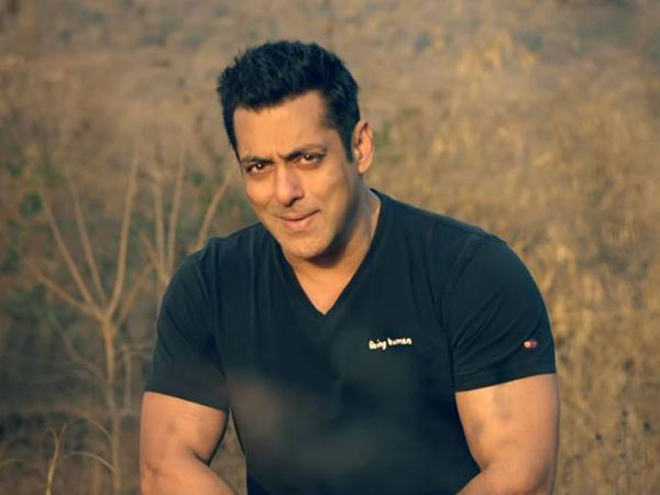 Salman Khan Bollywood Stars And Their Successful Side Businesses