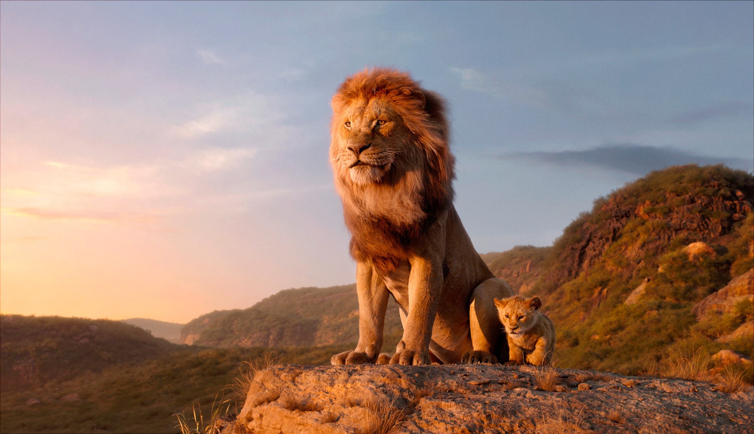 Photo of The Lion King Leaked Online Just A Day Into Its Release