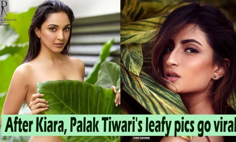 Palak Tiwari Does A Kiara Advani. All Thanks To Green Leaves