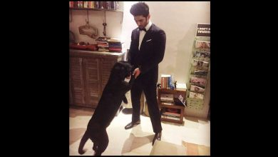 Photo of Sushant Singh Rajput's Pet Dog Trying to Find Him in His House