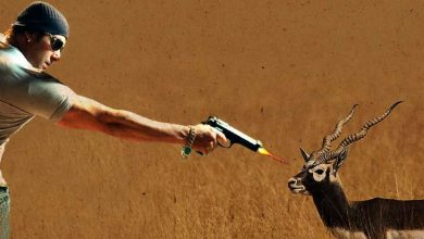 Photo of Salman Khan's Difficulty In Black Deer Poaching Case Increase As The Court Is Upset With THIS Thing