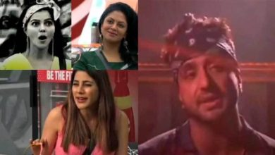 Photo of Aly Goni's Sister Defends Aly For Nominating Rubina Dilaik