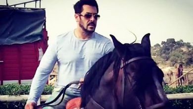 Photo of Rajasthan Woman Duped Of Rs. 12 Lacs By Fraudsters Who Offered To Sell Salman Khan's Horse To Her